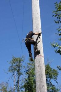 tree-climb-2