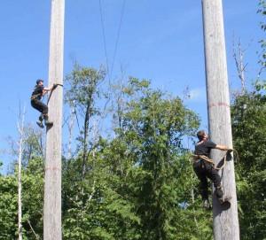 tree-climb-3